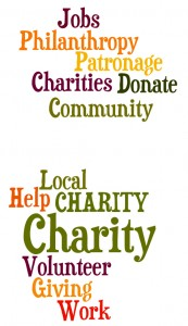 the pros and cons of working for a charity